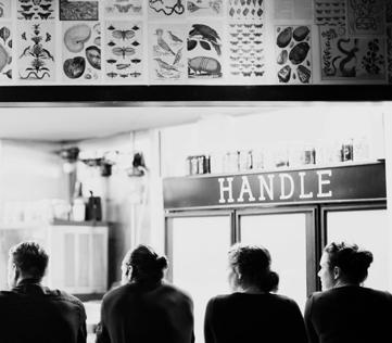 handle (2)